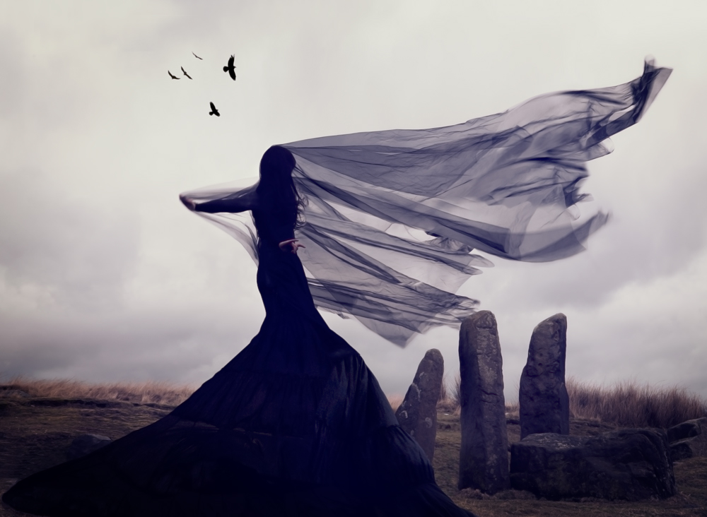 Nicola Taylor Photographer | Raven's Song
